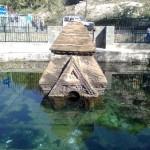 Ancient Siva Temple Manasbal Lake