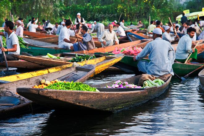 floating vegetable market in srinagar
