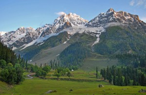 Beauty of Tanmarg