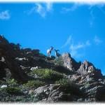 Kishtwar National Park