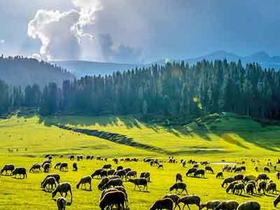 Treks in Kashmir