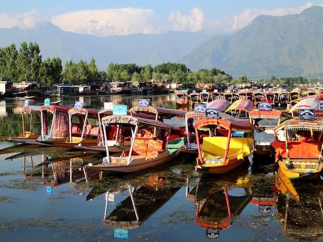 Srinagar5432