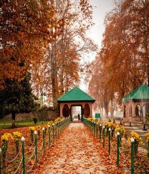 Unforgettable Kashmir